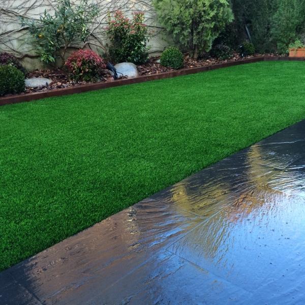 Img 1934 e1433932511811 empresa de jardiner a rea verda for Empresas jardineria barcelona