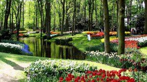 Jardín-Keukenhof-Holanda-jardineria-terrassa