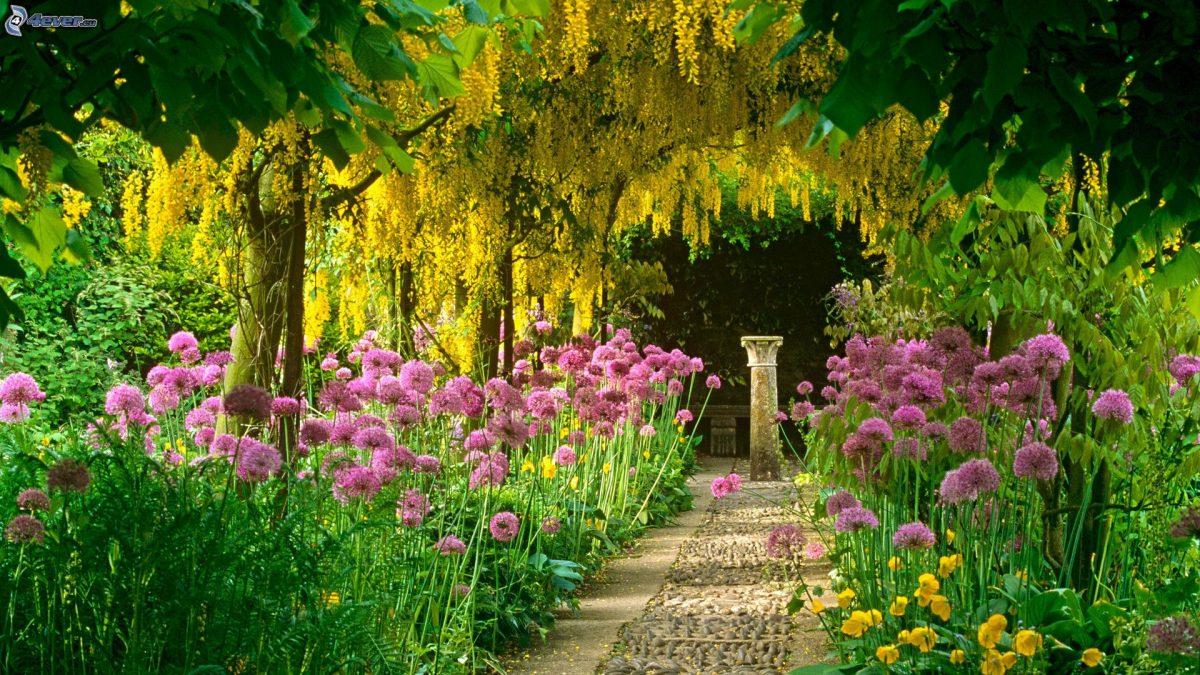 Mantenimiento de tu jard n empresa de jardiner a rea verda - Mantenimiento de jardines ...