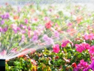 mantenimiento de jardines barcelona