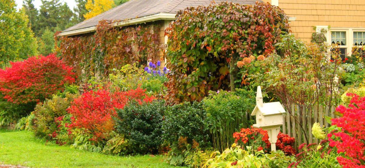 Jardinero sabadell para el oto o empresa de jardiner a for Jardineria sabadell