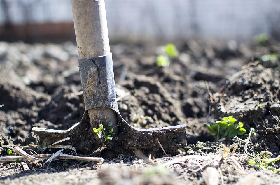 Empresas De Jardineria En Barcelona. Free With Empresas De ...