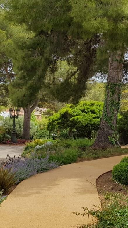 cesped natural jardin